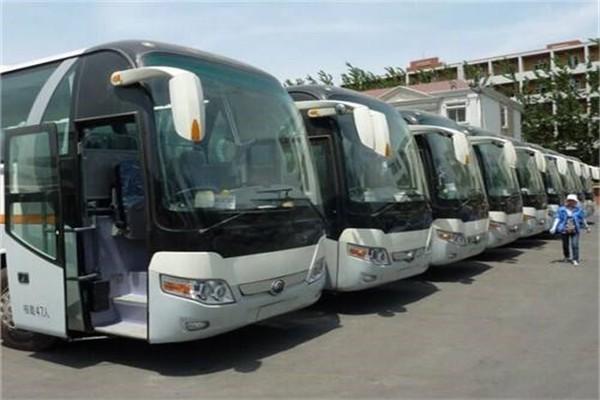 北京包车旅游服务团队