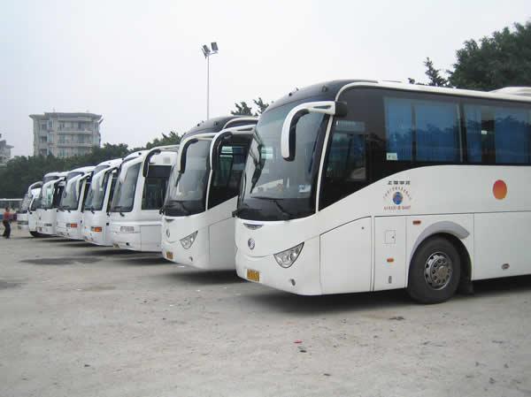 为什么在北京包车选用京牌好